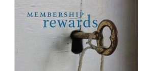 Membership Rewards Points: Shadow Currency, Orphan Savior and Risky Business